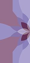 lotus3-a-sm