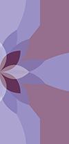 lotus3-b-sm